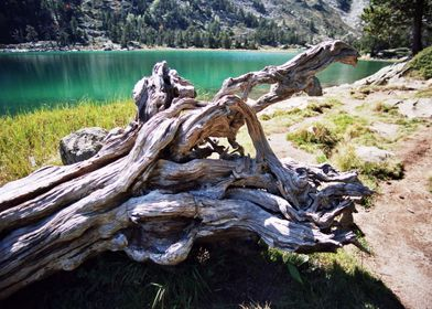 Pyrenees Lake 5