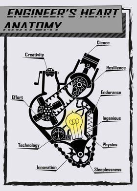 Engineer s heart anatomy