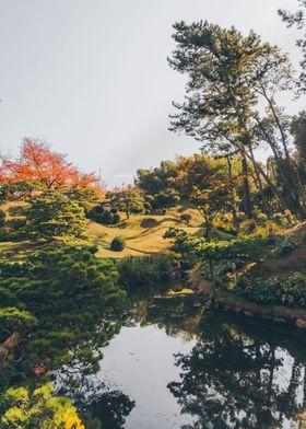 Reflection of a zen garden