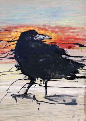 Vespertine Crow