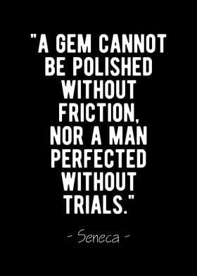 Perfection Seneca Quote