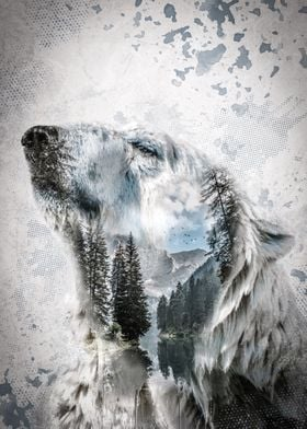 Lake Polar Bear
