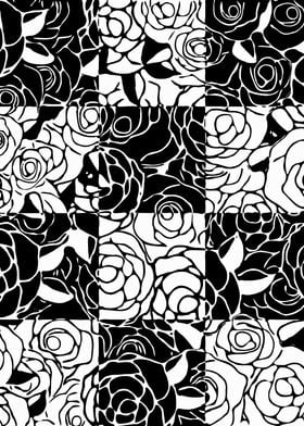 Black and White Roses 3