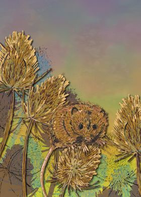 Harvest Mouse and Teasels
