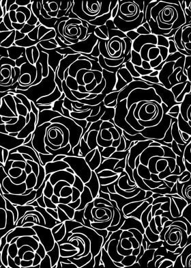 Balck and White Roses
