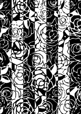 Black and White Roses 4