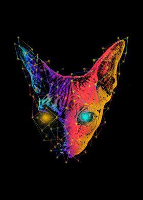 Geometry Sphynx Cat