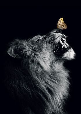 Lion with butterfly poster