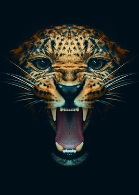 angry leopard face poster