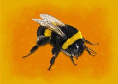 Fuzzy Bumblebee