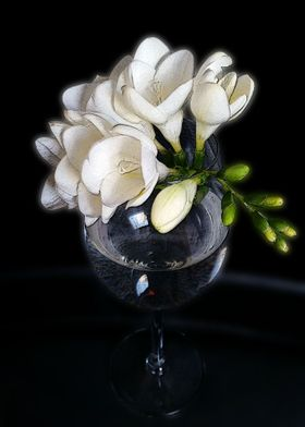 white freesia in a glass