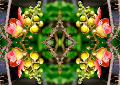 Tropical flower collage