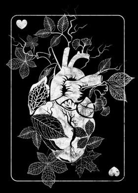 Leaf of Hearts