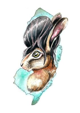 Jersey Hare