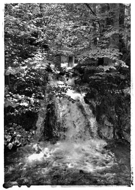 Waterfall in a forest BW