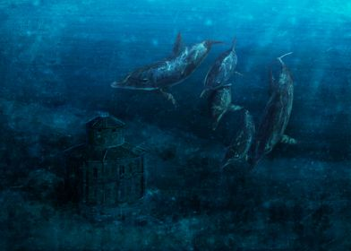 Zizzola underwater 2019