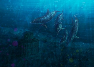 Zizzola underwater 2009