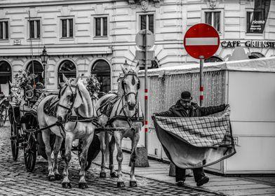 Vienna by day