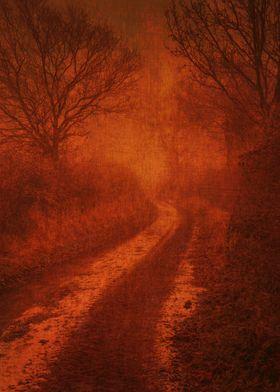 Walking Between Fields