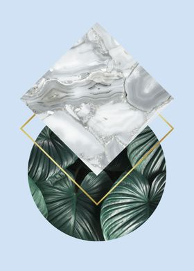 Natural polygon V