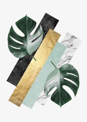 Botanical polygons IX