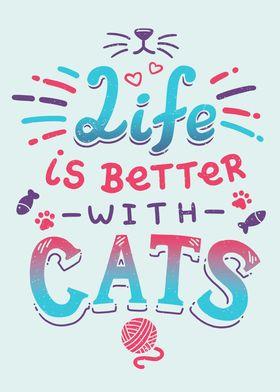 Cats Life Cute Kitten Love