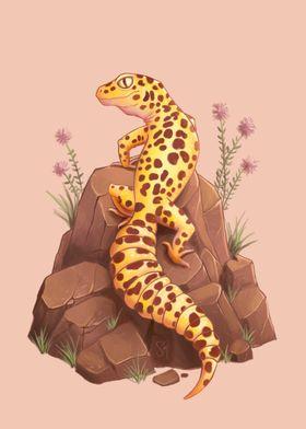 Leopard Gecko on the rock