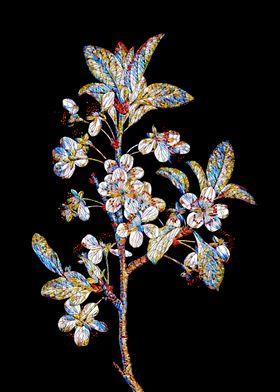 Prismatic Mosaic Botanical