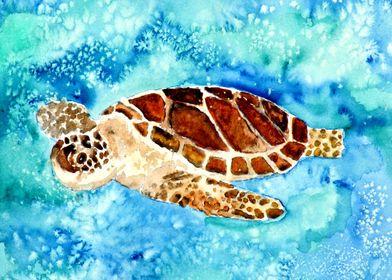 Baby sea turtle cute art