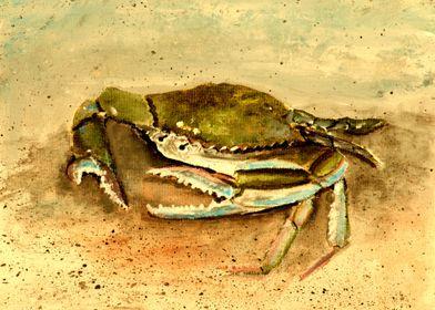 Crab Beach Art