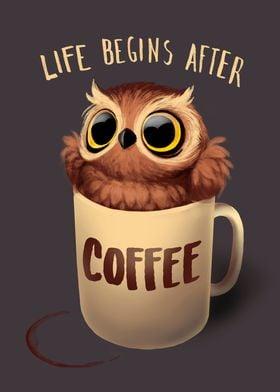 Night Owl Coffee