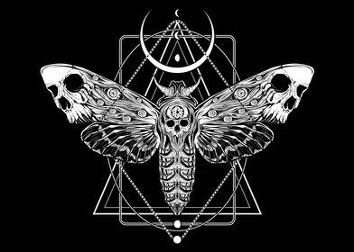 Surreal Death Moth