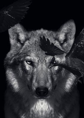 dark night wolf poster