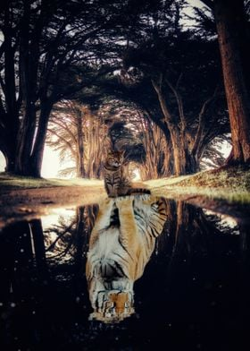 Cat spirit Tiger