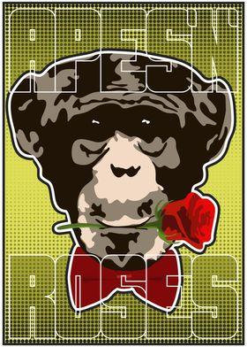 Chimp and Rose
