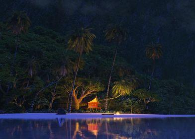 Moonlit Night in Paradise