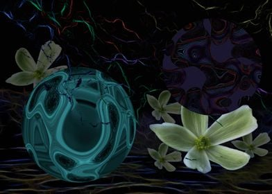 I Dreamt of Space Flowers