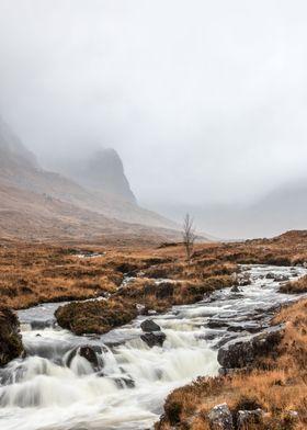 Foggy stream I