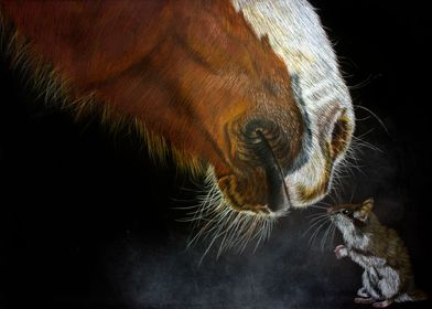 Horse and Mouse