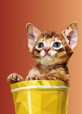 Cat in pot