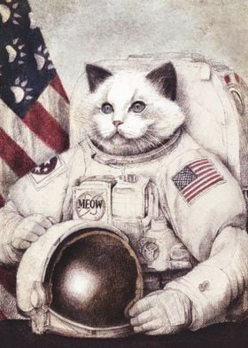 Meow out of space