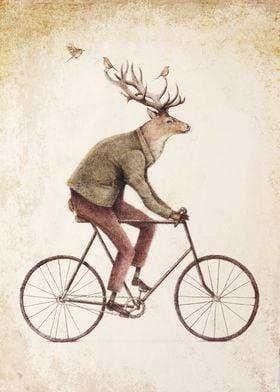 Even a Gentleman rides