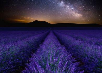 Fields of Eden