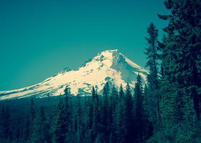 Vintage Mount Hood