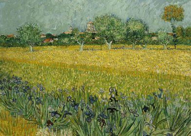 Field with Flowers near Ar