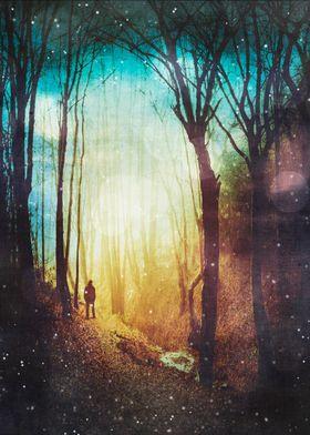 The Magic of quiet places