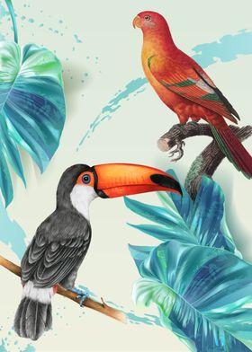 Tropical Birds 04