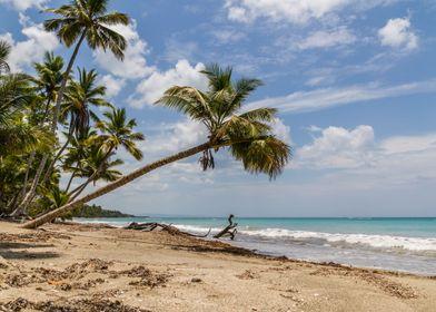 Playa Rogelio 2