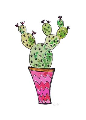 Cactus on pot