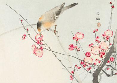 Bird on peach tree woodcut